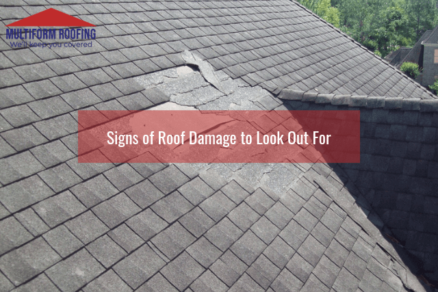 Signs of Roof Damage to Look Out For