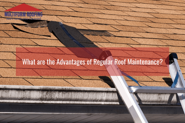 What are the Advantages of Regular Roof Maintenance